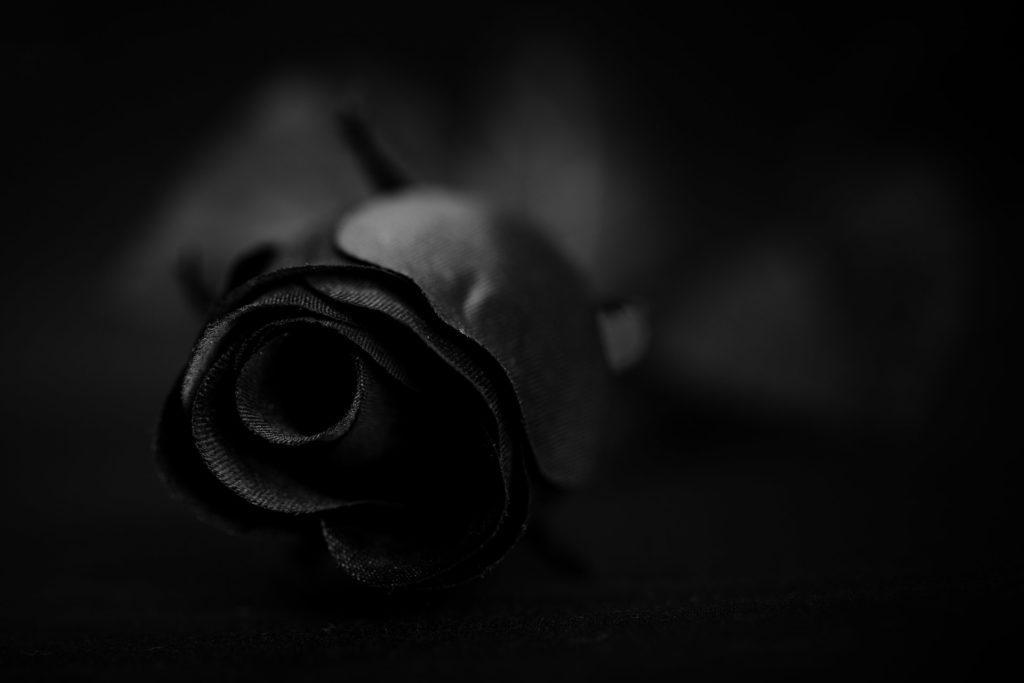 Spoken words – The Dark